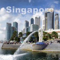 เรียนต่อสิงคโปร์